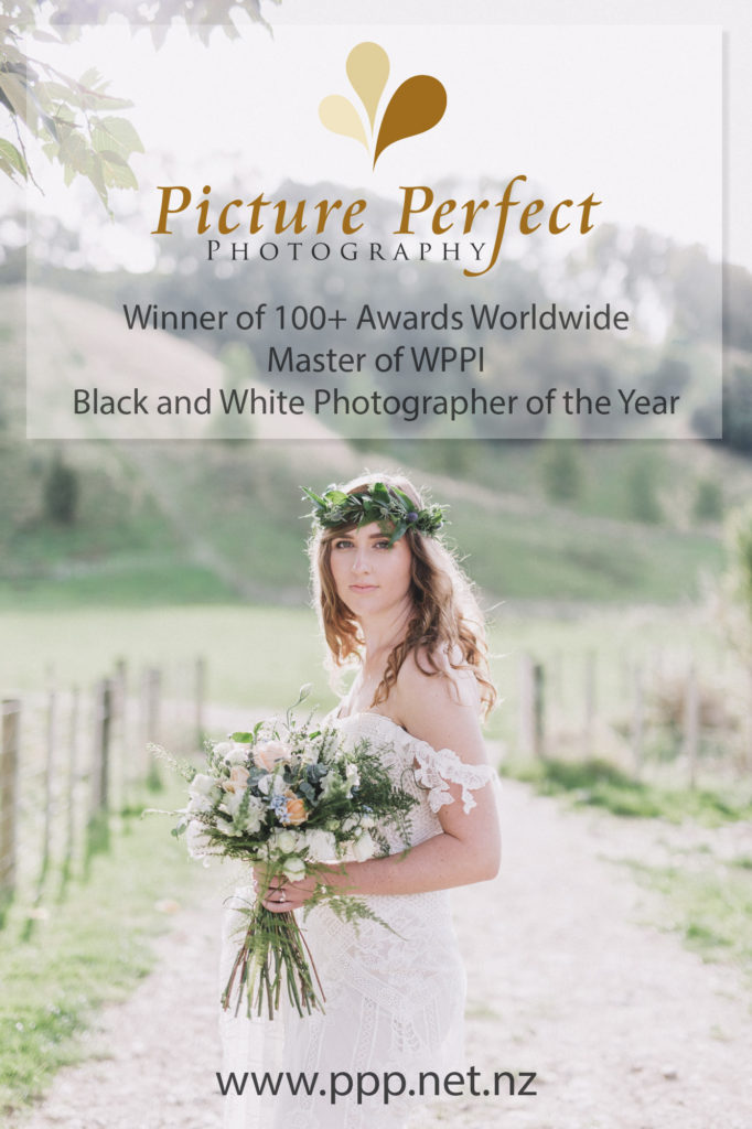 Palmerston North wedding photographer Binh Trinh winner of 300 awards and accolades worldwide